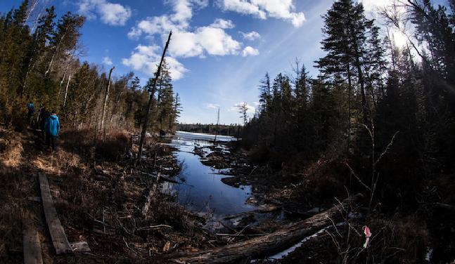 Schroon Lake Region Blog