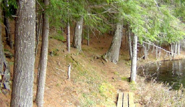 Tupper Lake Region Blog