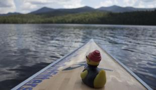 Saranac Lake Region Blog